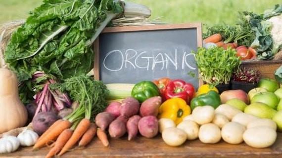 Các chứng chỉ organic trên thế giới