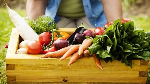 Thực phẩm Hữu cơ và thực phẩm Tự nhiên